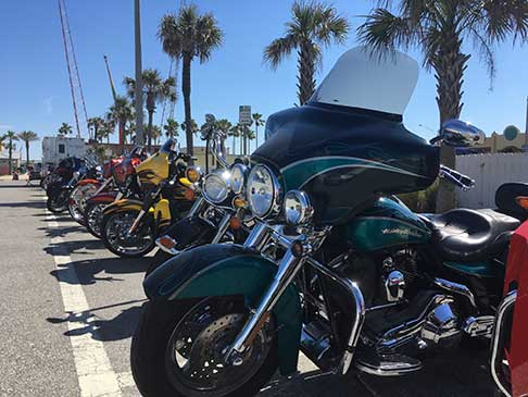 A row of motorcycles sitting in the sun with palm trees in the background