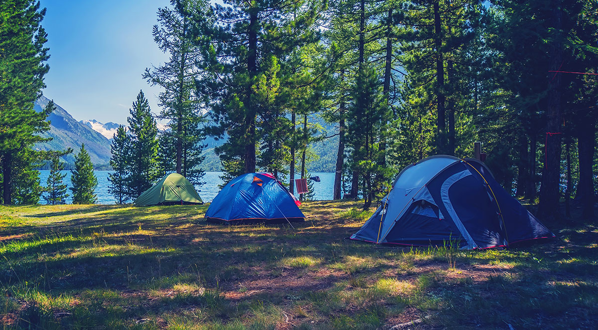 Three tents set up among tall trees next to a lake with mountains in the background.